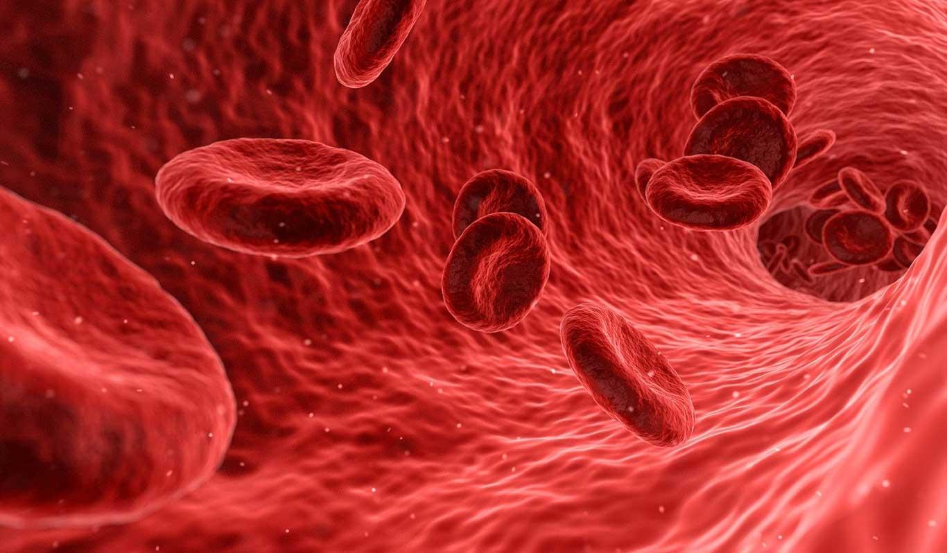 Alpha-1-Antitrypsinmangel und das Herz.