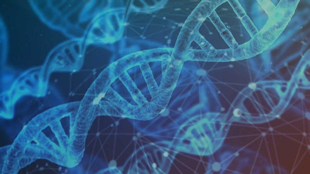 DNA-Strang. Alpha-1-Antitrypsinmangel ist ein genetischer Defekt.