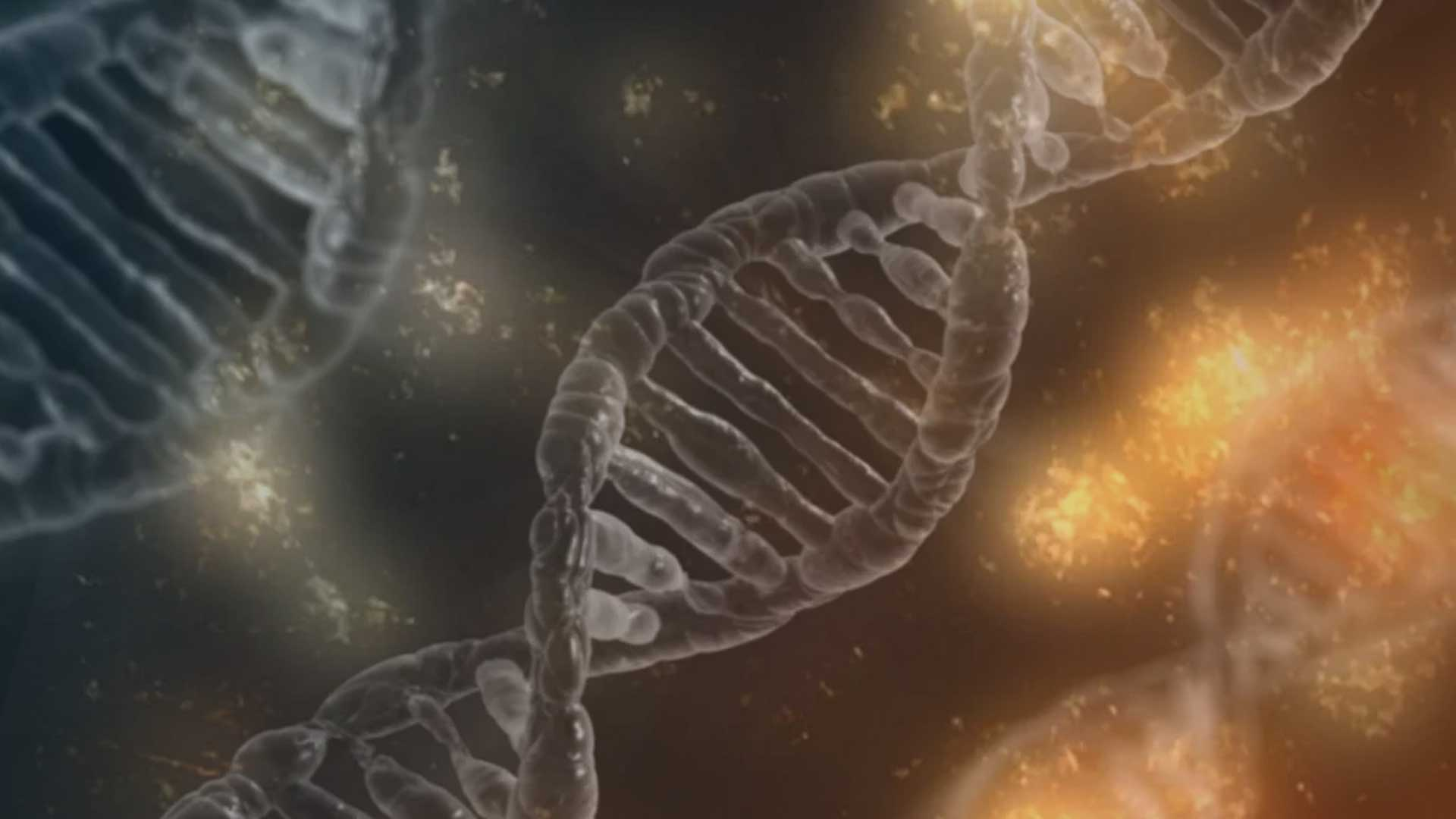 Alpha-1-Antitrypsin Mangel: Seltene Mutationen
