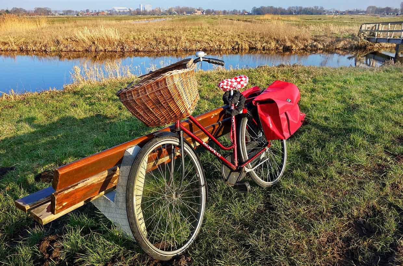Fahrrad angelehnt an eine Parkbank am See.