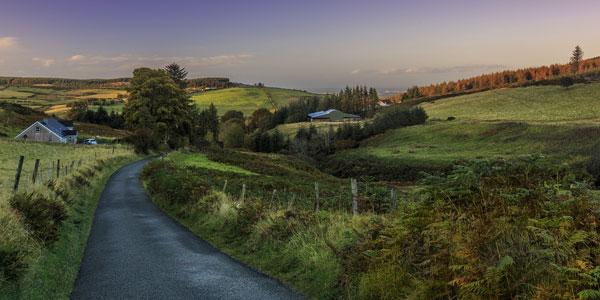 Grüne Landschaft in Irland