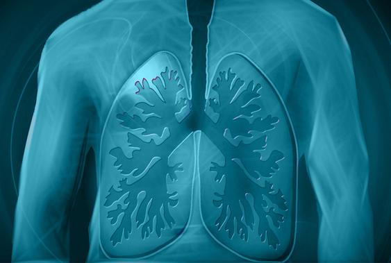 Die ELF (European Lung Foundation) stellt in vielen Sprachen zahlreiche Themen rund um die Lunge vor