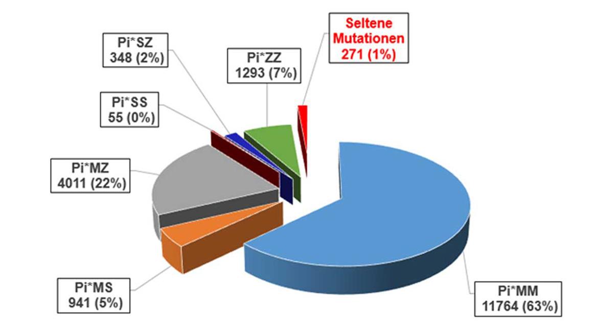 Kuchendiagramm: Verteilung der Mutationen